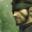 Avatar de malaguenio
