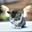 Avatar de gatolibertad