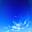 Avatar de Arco